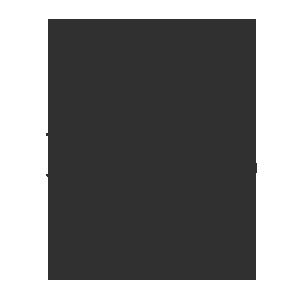 Nets Srl